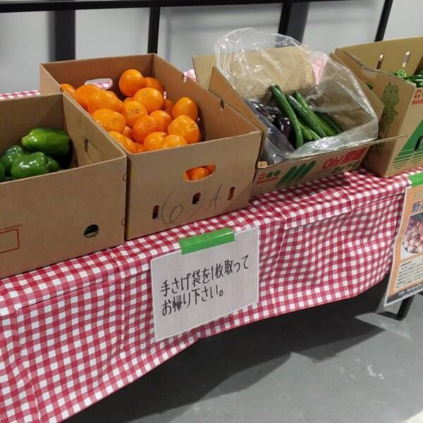 野菜詰め放題・詰め合わせイベント